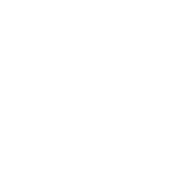Shirin Rabi Photography